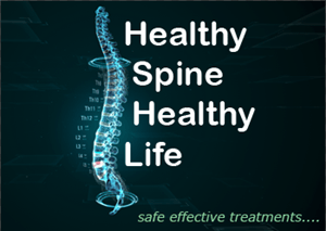 Healthy Spine Healthy Life image